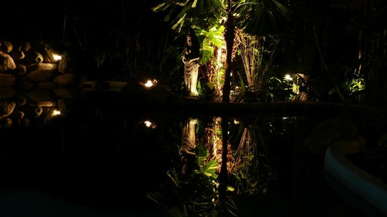 Palm Cove Tropic Apartments: Pool by night