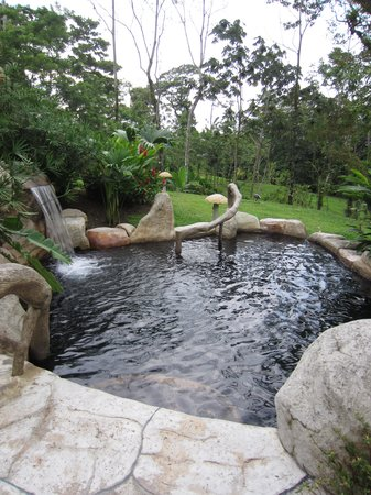 Hotel El Silencio del Campo : One of the Hot Spring Pools