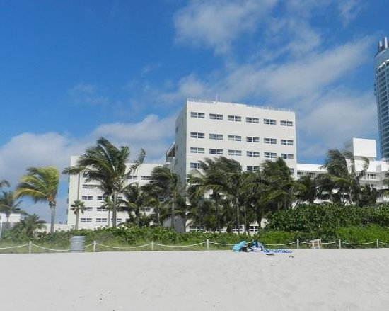 Holiday Inn Miami Beach: Vista posterior del hotel desde la playa.