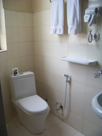 Addis Regency Hotel: clean bathroom