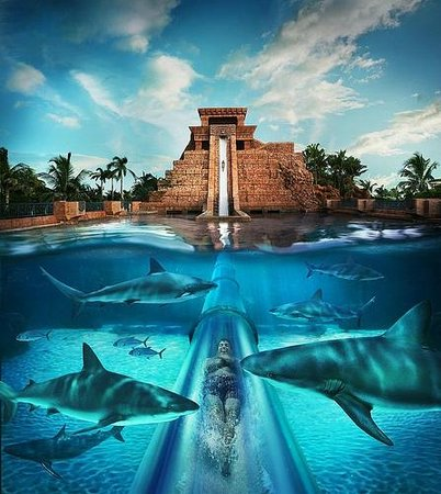 Photos of Aquaventure Water Park at Atlantis Paradise Island, Paradise Island
