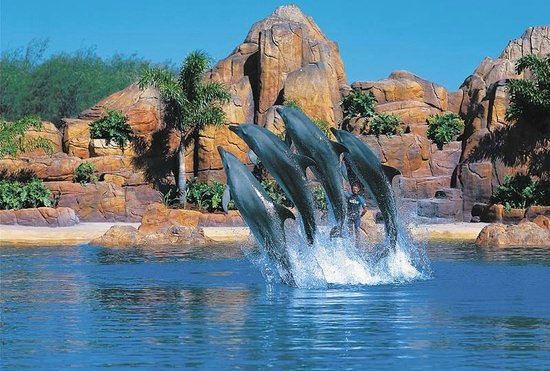 Main Beach, Australië: Sea World