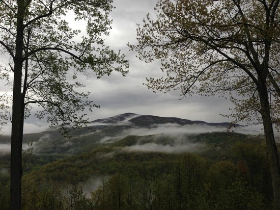 Elkins, WV: Misty Mountains