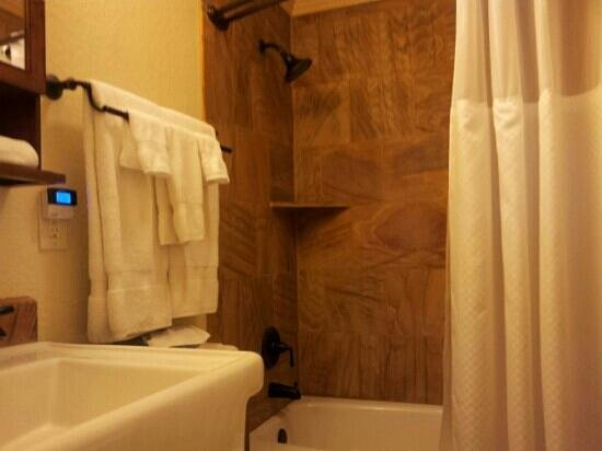 Yellowstone Gateway Inn: Nice but small bathroom.