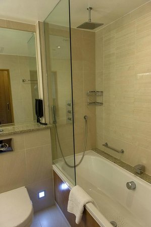 London Hilton on Park Lane: Shower