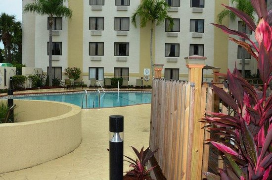 Holiday Inn Fort Myers Downtown Historic : Pool Landscape