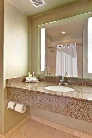 Holiday Inn Express Hotel and Suites Las Vegas 215 Beltway: Guest Bathroom