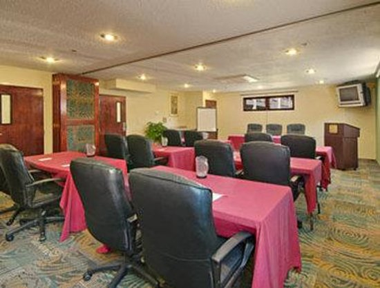 Ramada Inn St. Louis Airport/Hazelwood: Meeting Room