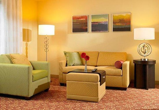 TownePlace Suites by Marriott Harrisburg Hershey: Studio Living Area