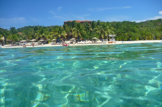 Mahogany Beach Roatan Honduras Address Attraction