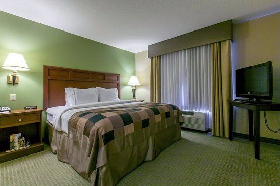 Bradenton, FL: We offer suites with one king bed and a queen sized pull out sofa