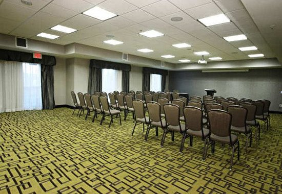 Fairfield Inn & Suites Amarillo Airport: Meeting Room