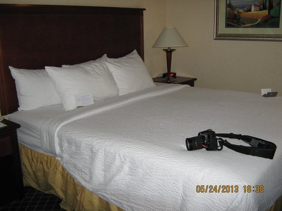 Fairfield Inn Flagstaff: Bed