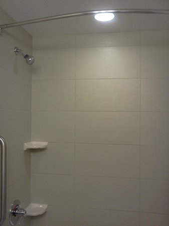 Embassy Suites Denver - Downtown / Convention Center: Wonderful shower