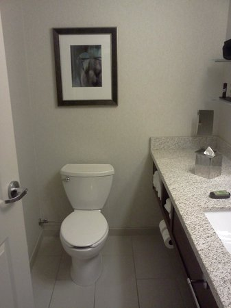 Embassy Suites Denver - Downtown / Convention Center: Efficient bathroom