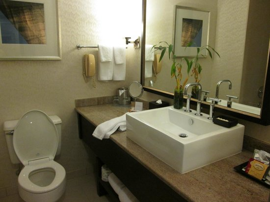 Hyatt Regency St. Louis at The Arch : Cute Bathroom