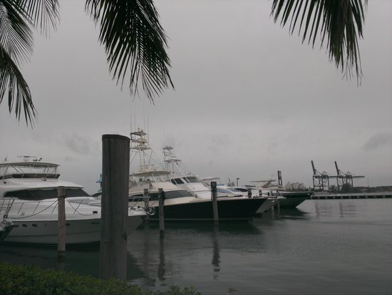 Doubletree by Hilton Grand Hotel Biscayne Bay: Yachts by the bay.