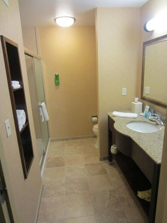 Hampton Inn & Suites Windsor - Sonoma Wine Country: Bathroom