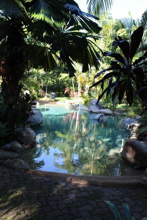 Cape Tribulation, Australia: Lower Pool