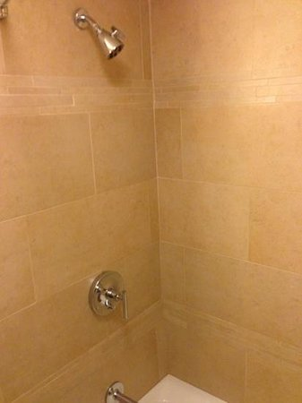 The Hyatt Lodge at McDonald's Campus: shower