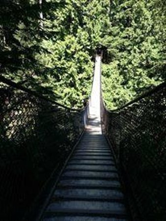 Vancouver Utara, Kanada: Lynn Canyon Suspension Bridge