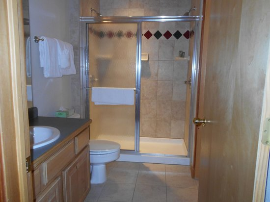 Grand Timber Lodge: Shower