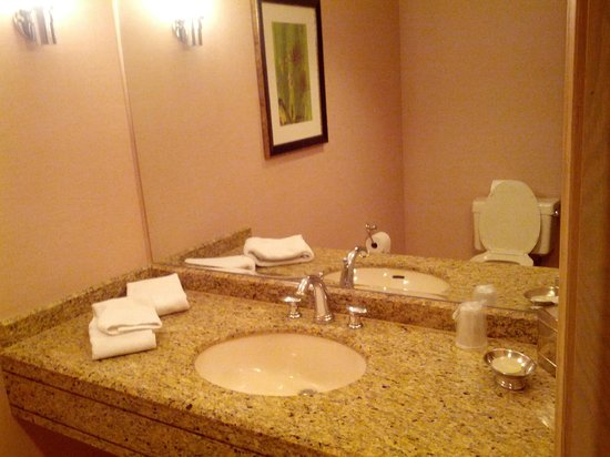 The Canyon Suites at The Phoenician: Powder room