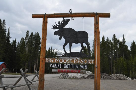 Cooke City, MT: Great sign, made property easy to locate!