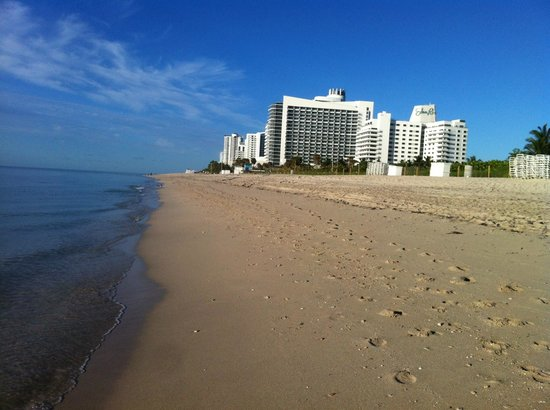 Eden Roc, a Renaissance Beach Resort & Spa: Hotel viewed from beach