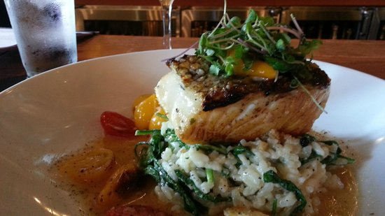 The Woodlands, TX: Sea Bass