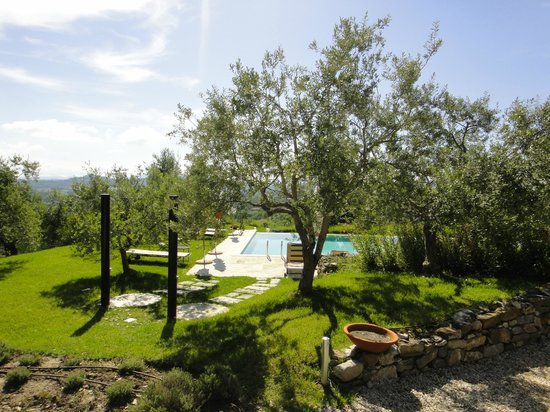 Chiusi, Italien: garden and pool
