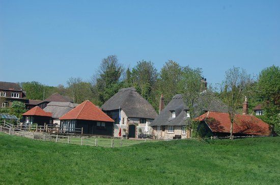Burpham, UK: The Thatched Barn from the lane