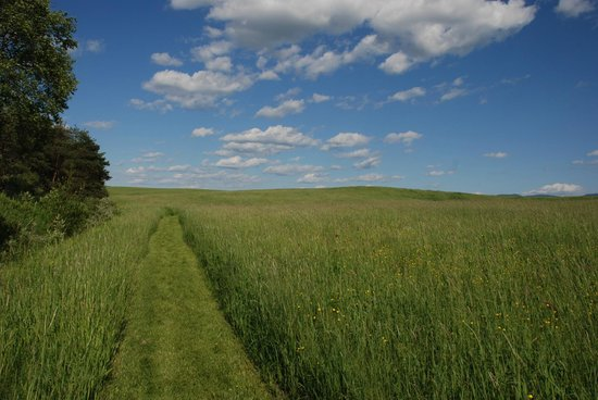Brome, Kanada: Mowed trail through the hay fields