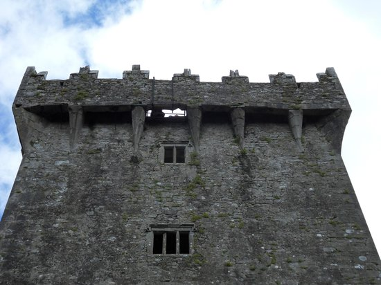 Blarney Castle Hotel: Kissing the stone.