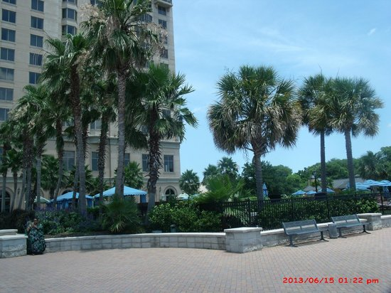 Westin Savannah Harbor Golf Resort & Spa: Grounds