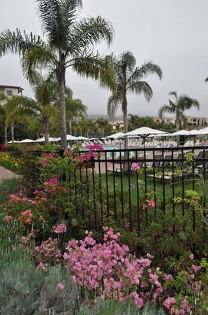 Rancho Palos Verdes, CA: Pool area
