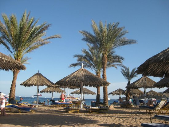 Hilton Sharm El Sheikh Fayrouz Resort: Biggest sand beach in the area