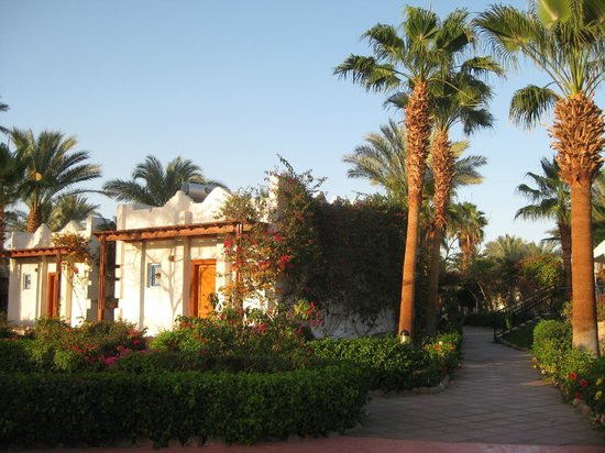 Hilton Sharm El Sheikh Fayrouz Resort: Rooms are in cabanas among well maintained gardens