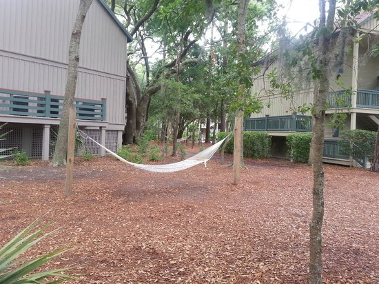 Disney's Hilton Head Island Resort: Hammock