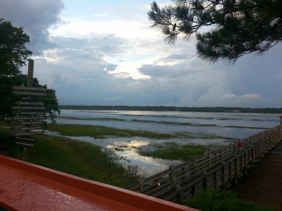 Disney's Hilton Head Island Resort: View