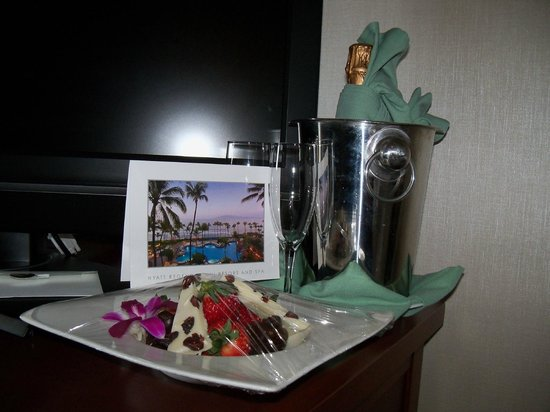 Hyatt Regency Maui Resort and Spa: Our Honeymoon gift