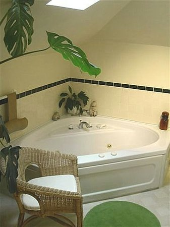 Nelson House B & B: Shangri-La's Jacuzzi for two.