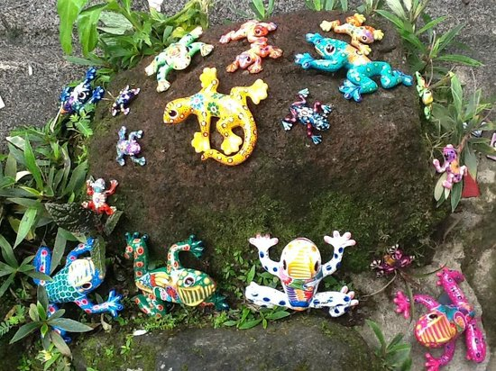 Nuevo Arenal, Costa Rica: Frogs for sale in the gallery