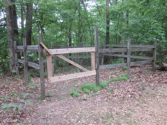 Great Falls Park: The trail also intersects with horse trails.