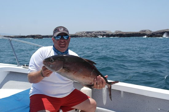 Amberjack for Private fishing charters