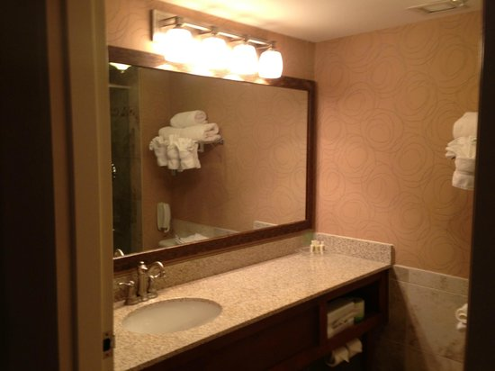Holiday Inn Ft. Lauderdale Airport: Bathroom