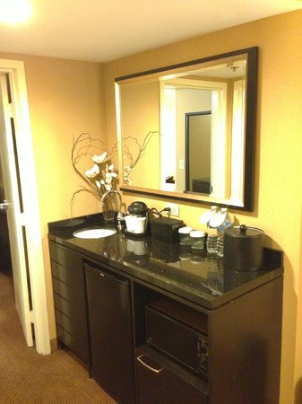 Embassy Suites by Hilton Chicago Downtown: Room