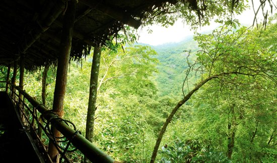 Balcony of the tribal cottege overlooking the hills above for Balcony jungle