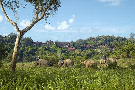 Photo of Anantara Golden Triangle Elephant Camp & Resort Chiang Saen