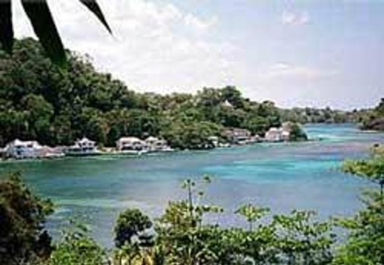 Montego Bay, Jamaica: Book with Paradise Palms Jamaica Tours and ...